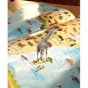 Атлас Белкартография Растения и животные мира 3D